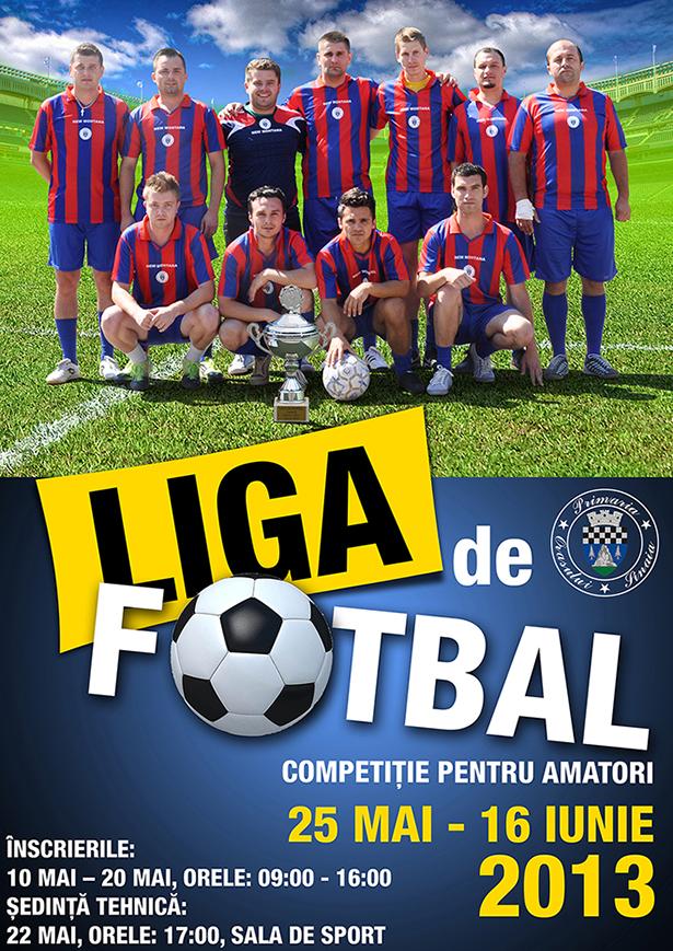 Liga de Fotbal 2013