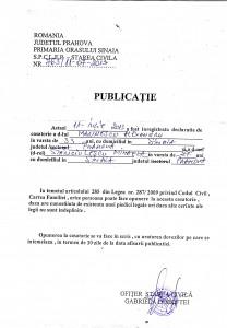 PUBLICATIE_Marinescu Alexandru