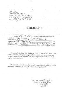 Publicatie_Cernea