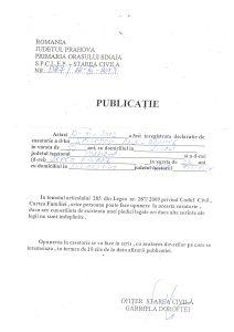 Publicatie_Spirescu_Andi
