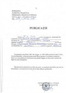 Publicatie_Bucur_Alexandru_Ionut