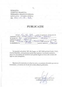 Publicatie_Mihailescu_Ciprian_Dragos