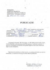 Publicatie_Rucareanu