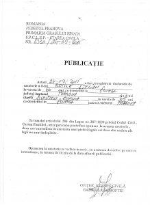 publicatie_Rotila_Stelian