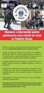 Flyer simulare
