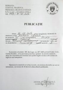 Publicatie_Frigioiu_Catalin