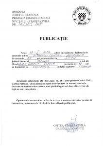 publicatie_Nedelcu_Cristian