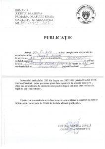 Publicatie_Ignat_Mihai